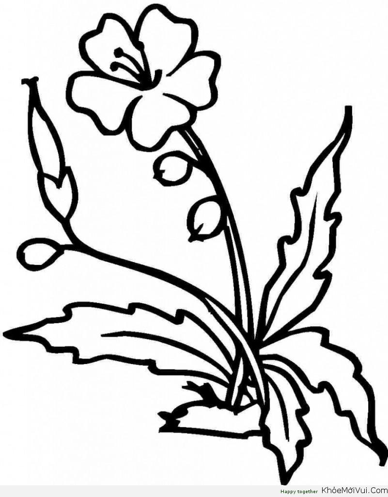 tranh-to-mau-bong-hoa