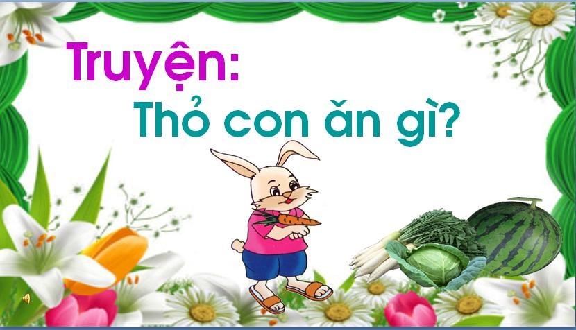 Truyện thỏ con ăn gì? – Truyện Mầm non chủ đề động vật